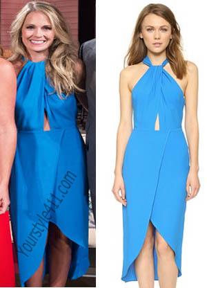 Cameran Blue Dress